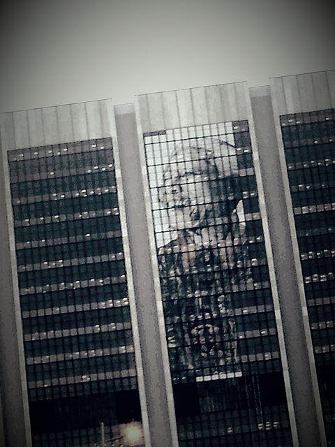 Nelson Mandela | Flickr - Photo Sharing!