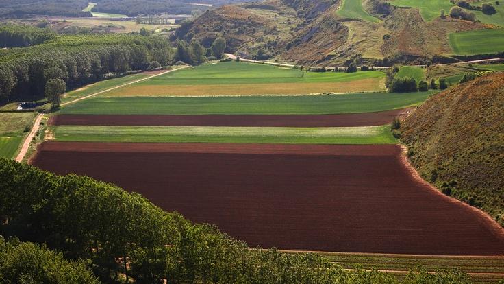 Desde un antiguo castro romano, Monte Cildá. Cerca de Villaescusa de las Torres.Palencia