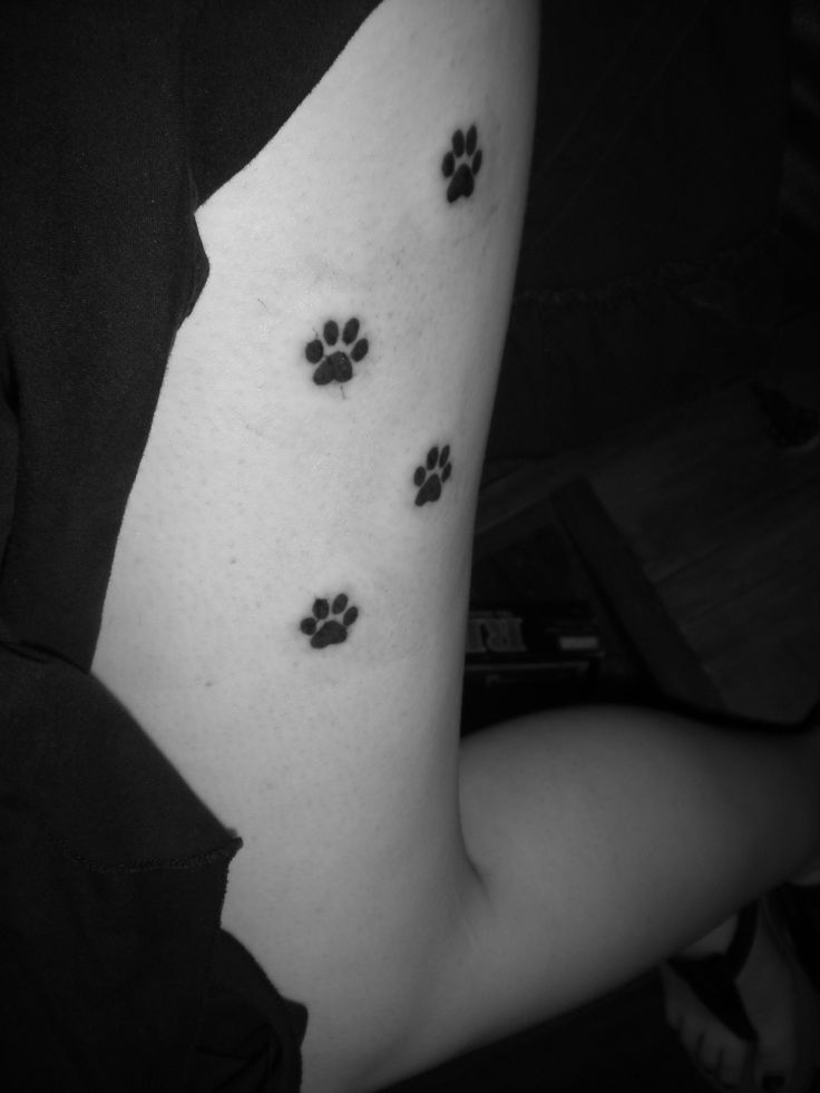 Cat paw print tattoo.  Would love this.