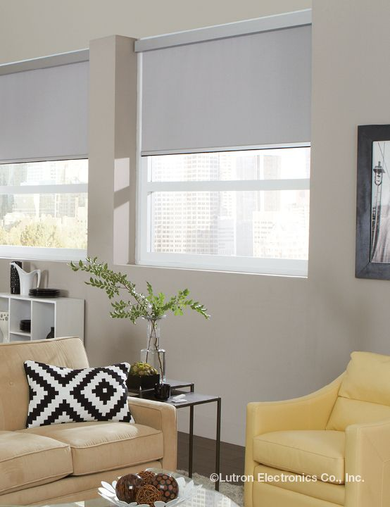 Blackout shades eliminate all daylight without interrupting your design.  www.lutron.com/