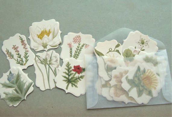 Vintage Paper Wildflowers Worth Notice Die Cut Stickers Seals Limited Edition (16)