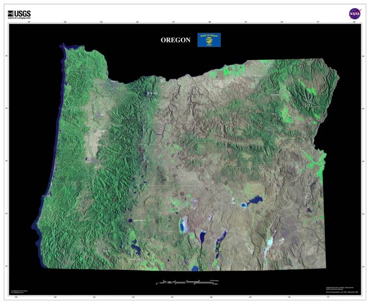 Oregon Satellite Imagery State Map Poster