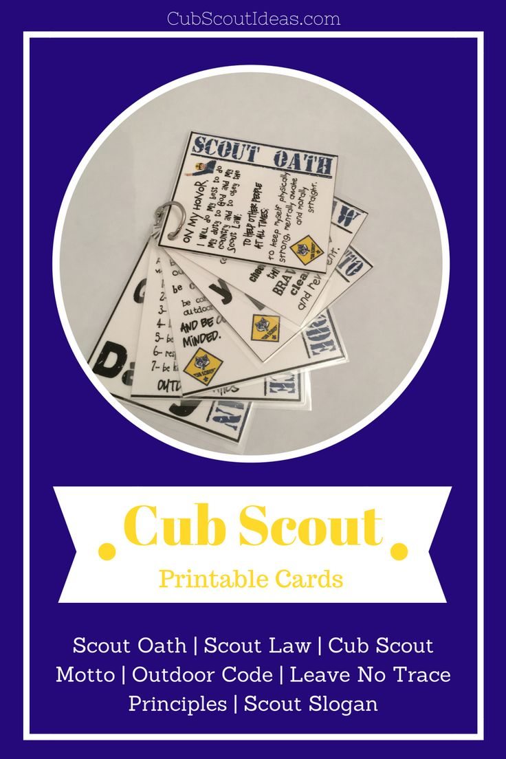 Want a fun resource for your den or pack? Then read on to see how I used these cool printable Cub Scout cards. They're so cute and useful!