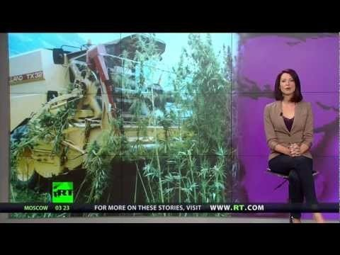 ~Hemp Revolution 2: http://whynotnews.eu/?p=2231 ~Unslave Humanity Tactical Media: http://whynotnews.eu/?p=2143 ~credits video: http://youtube.com/breakingtheset - Abby Martin takes a look at the real reason why hemp is illegal in the US, the truth might surprise you!    ~Unslave Humanity Tactical Media: http://whynotnews.eu/?p=2143    This video is...