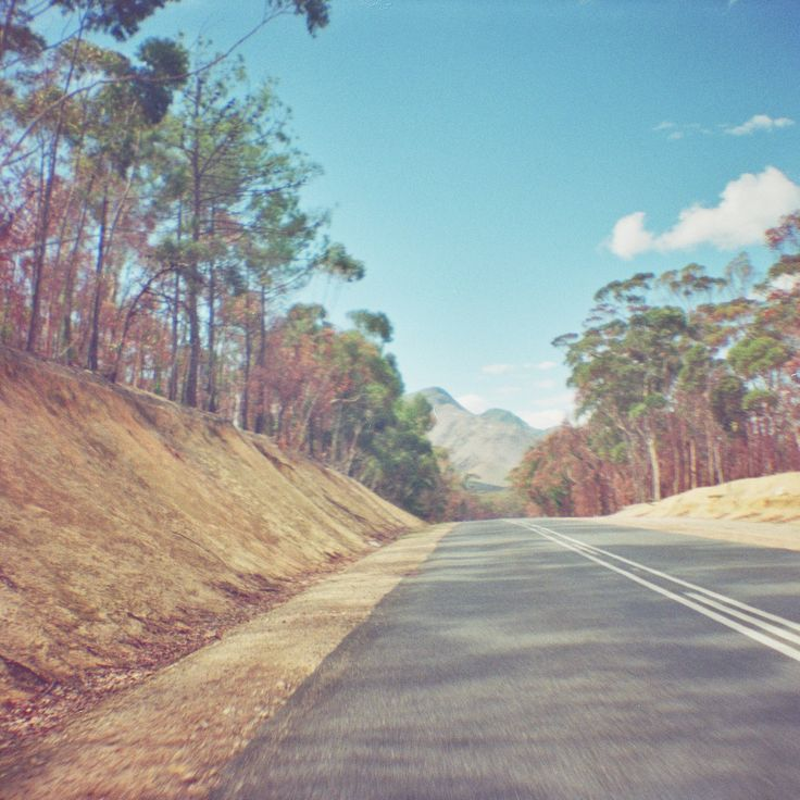 Lomography - Diana Mini - Roadtripping