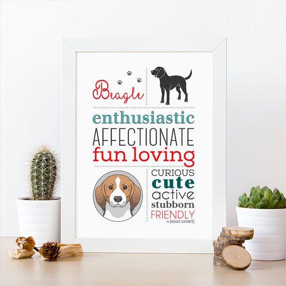 beagle ilustración. beagle poster decoración pared. Lámina de raza de perro. Poster raza de perro. Impresión de beagle. Regalo para perros