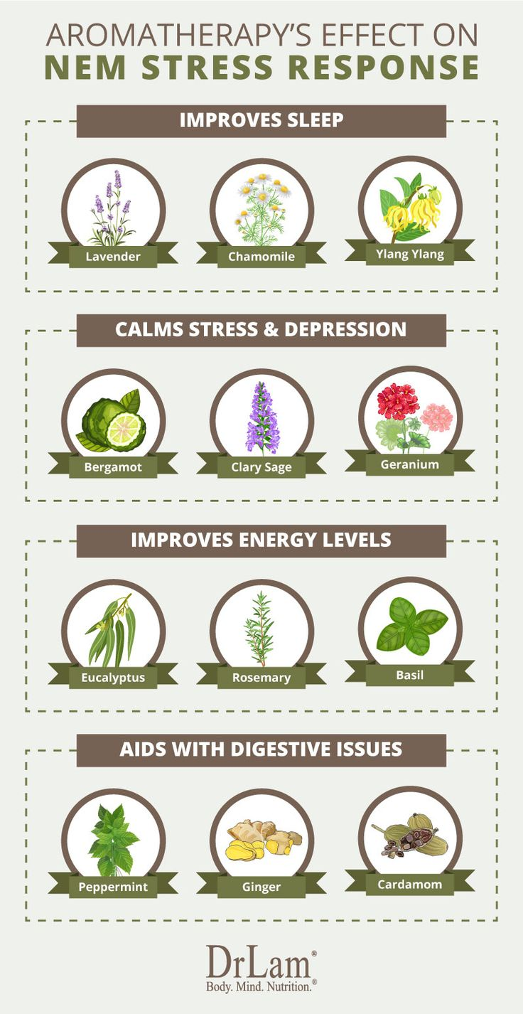 Informative Guide to Aromatherapy Benefits and Uses for BeginnersJane Thompson