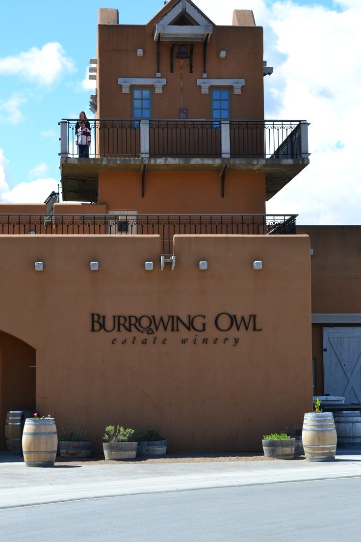 Burrowing Owel ~ Okanagan winery. One of hundreds of wineries in the Okanagan. BC, Canada.