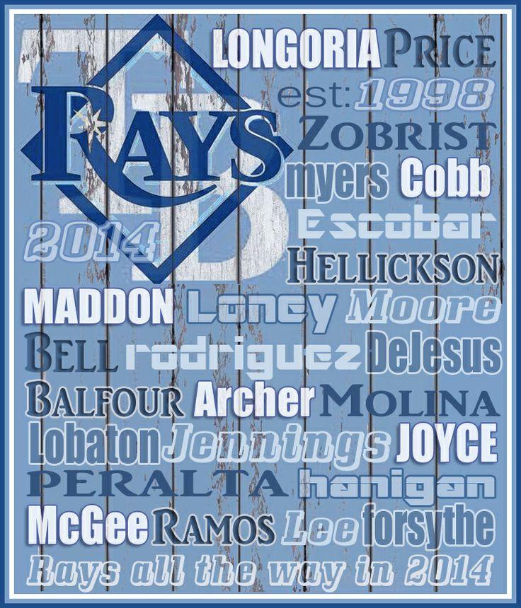 Tampa Bay Rays 2014. GO RAYS!!!