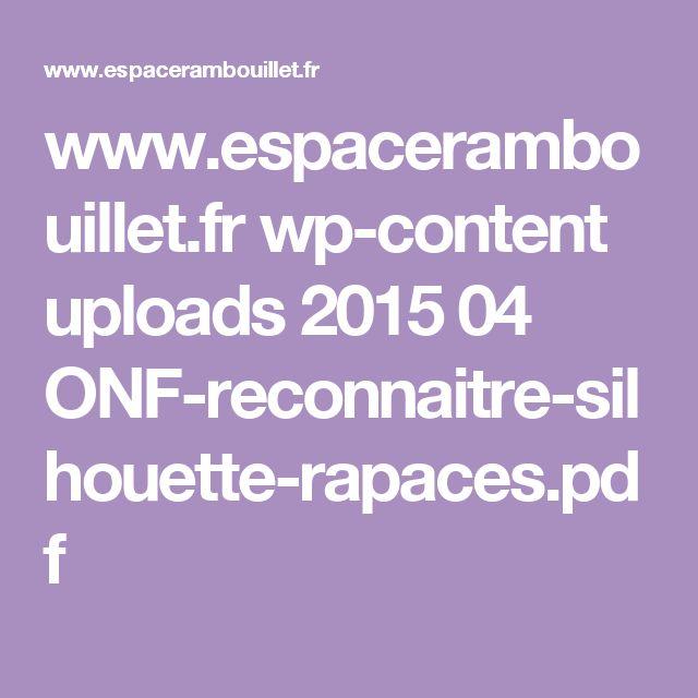 www.espacerambouillet.fr wp-content uploads 2015 04 ONF-reconnaitre-silhouette-rapaces.pdf