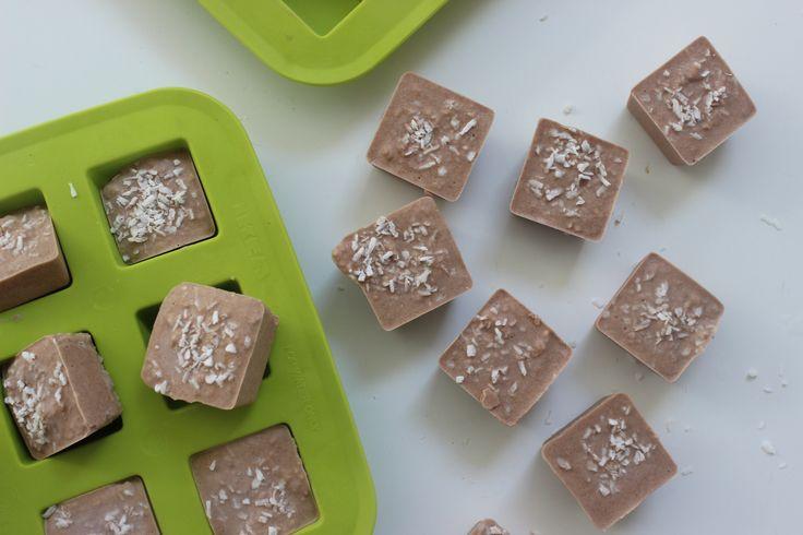 Coconut Cacao Sea Salt Bites