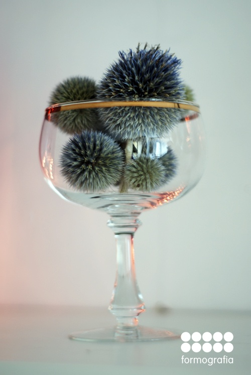 thistle balls in a glass
