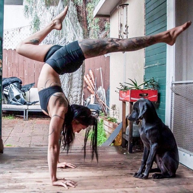 @venomblackbird loves #yoga, #climbing, and her dog #ghost! Get to know more about this #babe when you check out the suicidegirls periscope now!