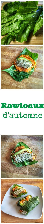 Rawleaux d'automne à la courge et aux épinards