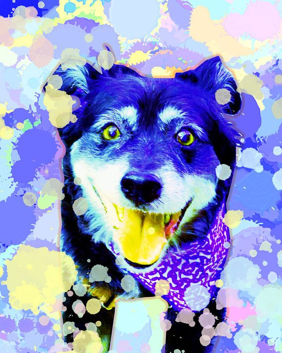 Custom dog portrait Dog portrait custom Custom dog painting