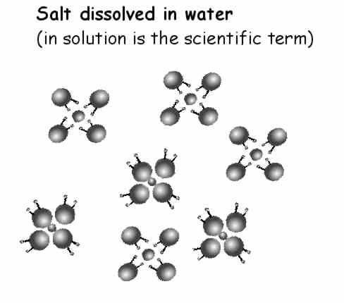 salt / sugar crystals~ Science Project