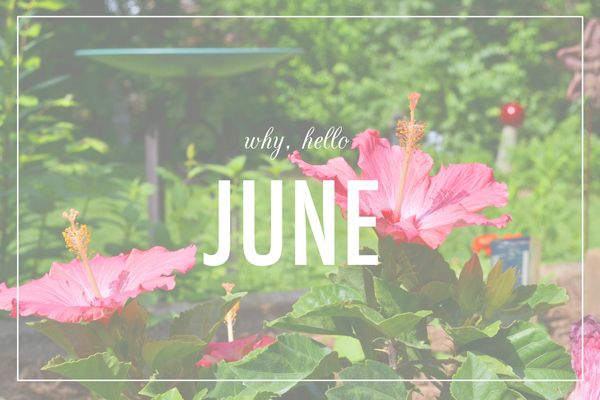 Download the best June 2017 Printable calendar with holidays from our website. June 2017 calendar templates are also available for free download.