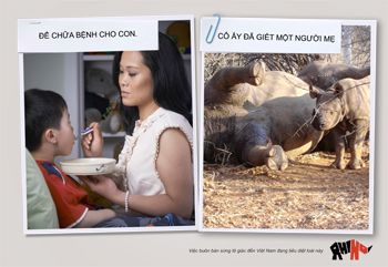 Our new ad in Vietnamese. Thanks to Grey Group and all our Pozible supporters!