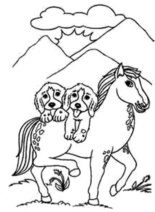 Pinto Horse Coloring Pages: Dog And Horse Coloring Page