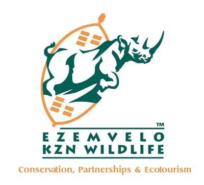 Ezemvelo KZN Wildife and The Maluti-Drakensberg Vulture Project do wonderful work to help the Bearded Vulture
