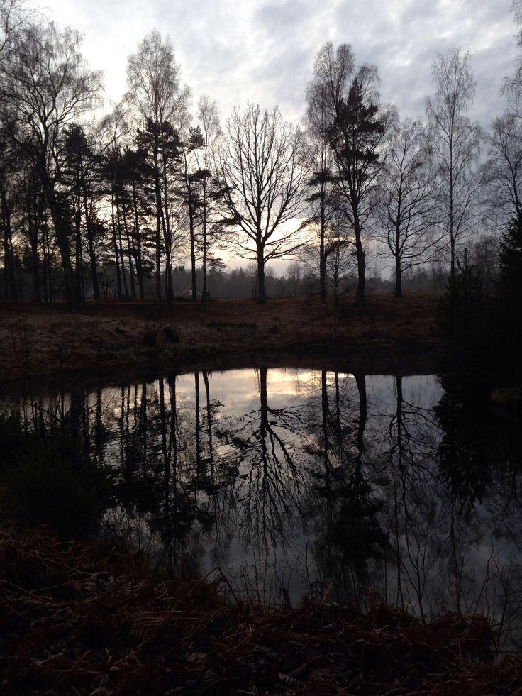 Natur, lugn, energi och kärlek  Tagen av mig, Jessica Brewald