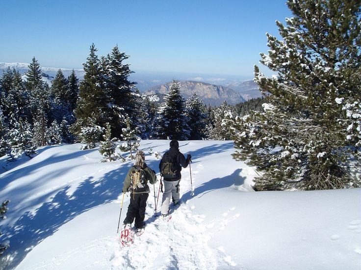 Randonnéee en raquettes en Ariège au Plateau de Beille Par Base Angaka - ADT Ariège #TourismeMidiPy #MidiPyrenees #France #raquette #tourism #holiday #vacation #travel #ski #snow #neige #skiresort #snowshoes
