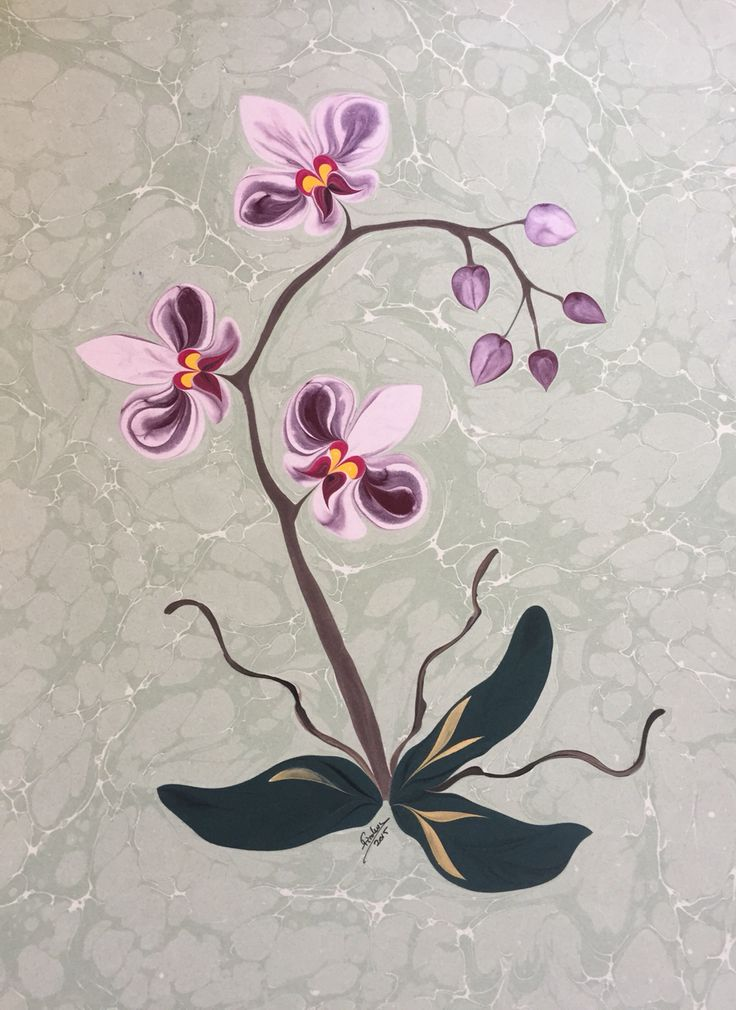 Firdevs Çalkanoğlu imzalı orkide ebru #marbling #ebru #çiçek #flower #orkide