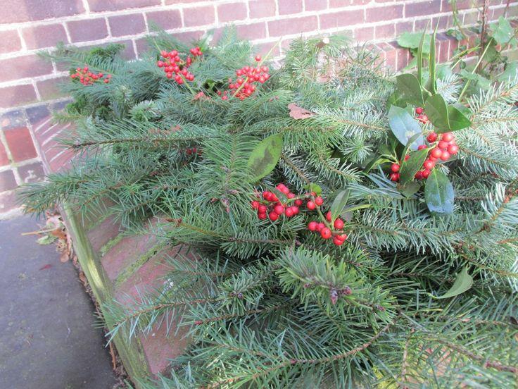 Tip: bloembakken vullen met kerst- en wintergroen - Groene Passies