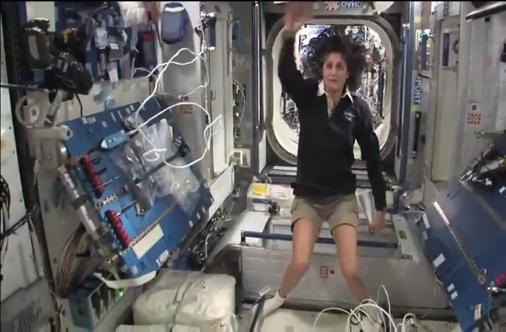 In this video, Sunita Williams takes you on a fascinating tour of the International Space Station's orbital laboratory. The extensive tour shows many curiosities and answers different questions in the process.