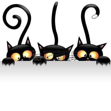 Funny Black Cats Cartoon with White Panel photo