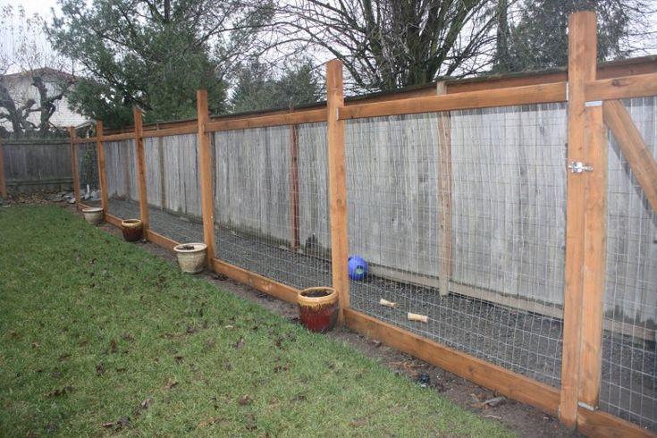 Build a safe yard length dog run diy dog run backyard