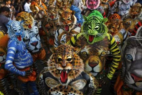 Indisk tigerfest og en musikfestival, der blander 'Bossen' med dødsmetal