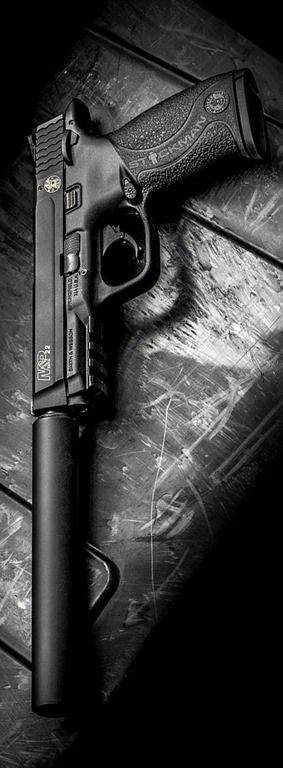 Gun of the Day – S&W MP22 suppressed