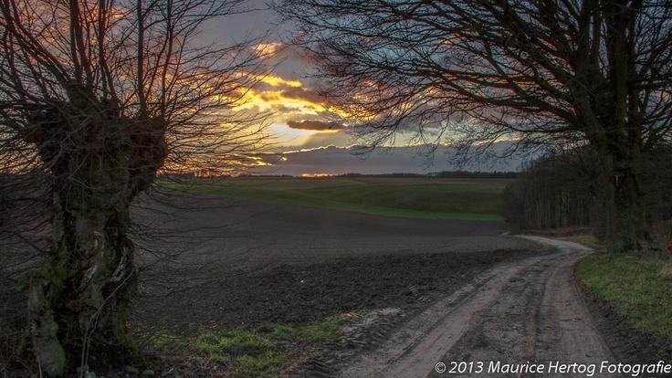Trees obscuring the sunset, Landsrade  Photo © Maurice Hertog Fotografie