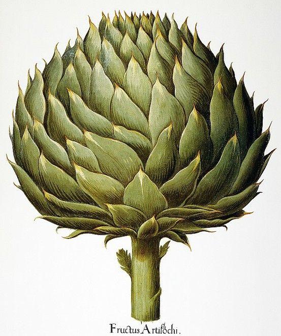 """""""Vous au moins, vous ne risquez pas d'être un légume, puisque même un artichaut a du cœur.""""/""""You could never be a vegetable, even artichokes have hearts."""" -Le fabuleux destin d'Amélie Poulain"""