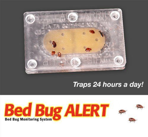 17 best images about garden on pinterest stables 6 for Bed bug alert monitor