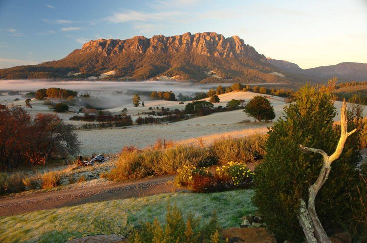 Frost and Fog around Mt Roland, Tasmania, Australia.