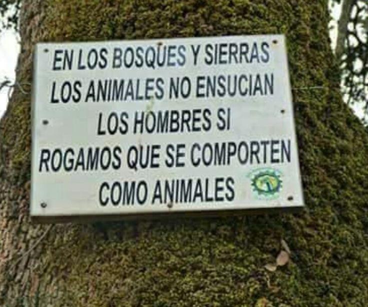 En los bosques y sierras los animales no ensucian, los hombres si. rogamos que se comporten como animales