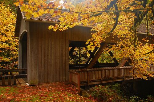 Covered bridge by Just Peachy!, via Flickr Oregon Covered bridges