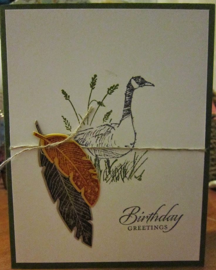 Krafting with Karen: Wetlands Stamp Set with Feathers Framelits