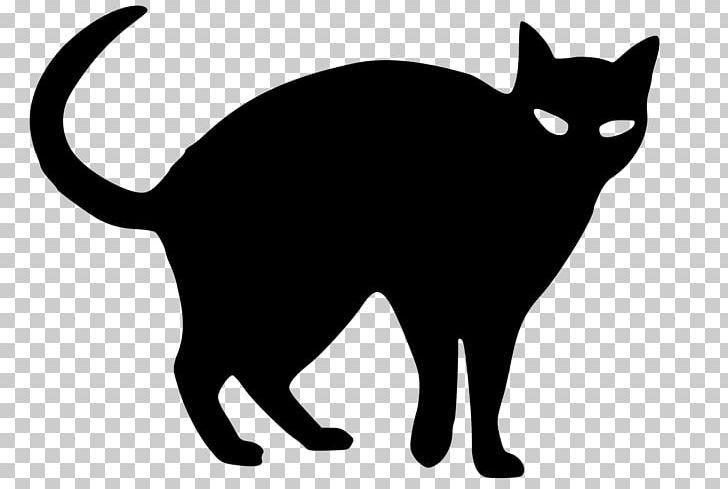 Black Cat Kitten Snowshoe Cat Png Animals Bla Black Carnivoran Cat Cats And Kittens Snowshoe Cat Black Cat