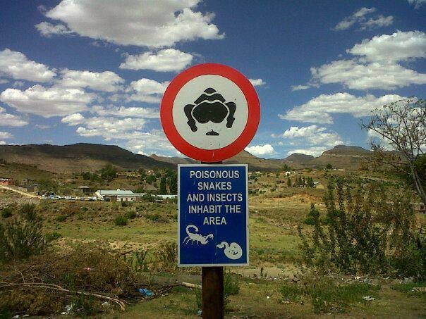 How badly do you need the loo? Check out these 10 hilarious toilet-humour signs: http://blog.africageographic.com/safari-blog/funny/10-hilarious-toilet-humour-signs/