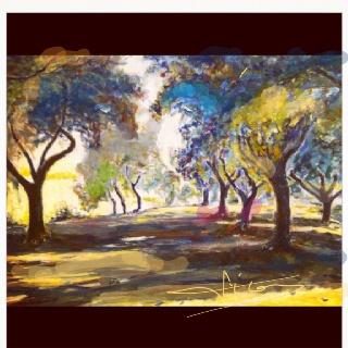 Jardín recogido , huerto de olivos