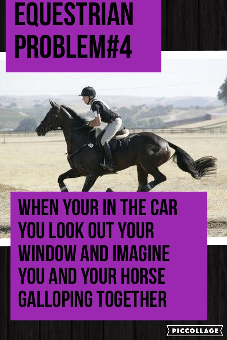 Or when you imagine things like golf courses put to better use as cross country courses. Equestrian problems