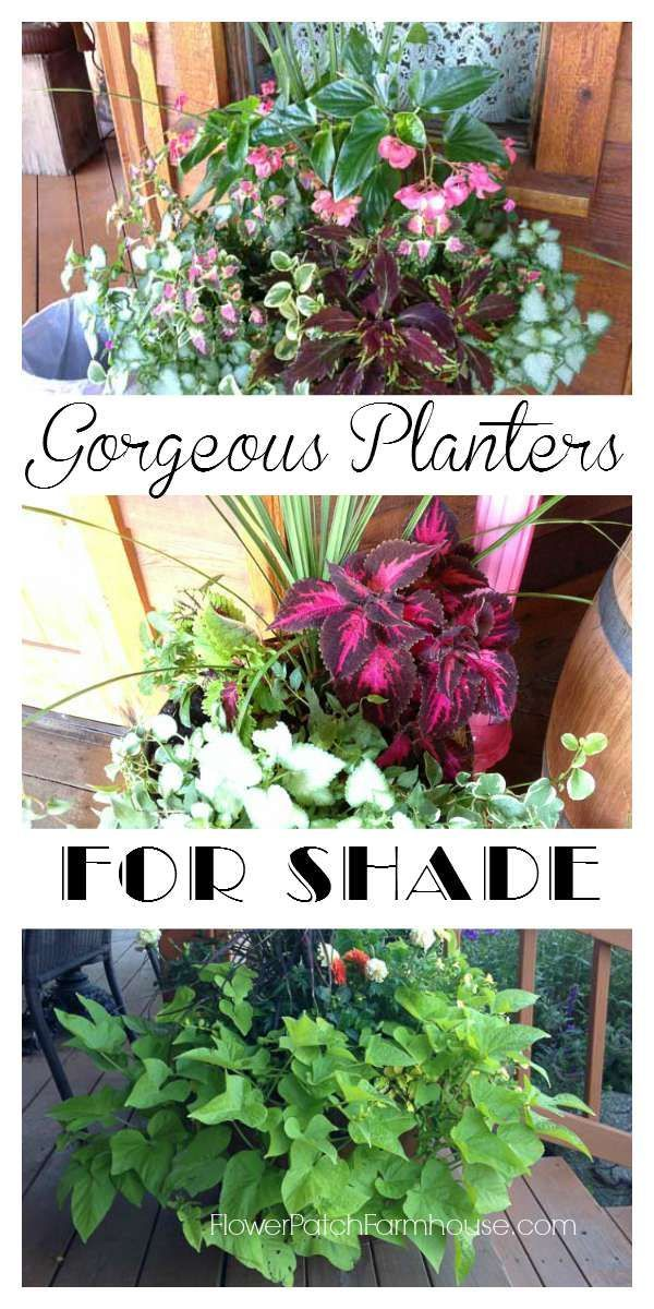 Gorgeous planters for Shade, See how you can plant up glorious, bright window boxes, pots and tiered planters filled with colorful foliage and blooms that do great in the shade. FlowerPatchFarmhouse.com