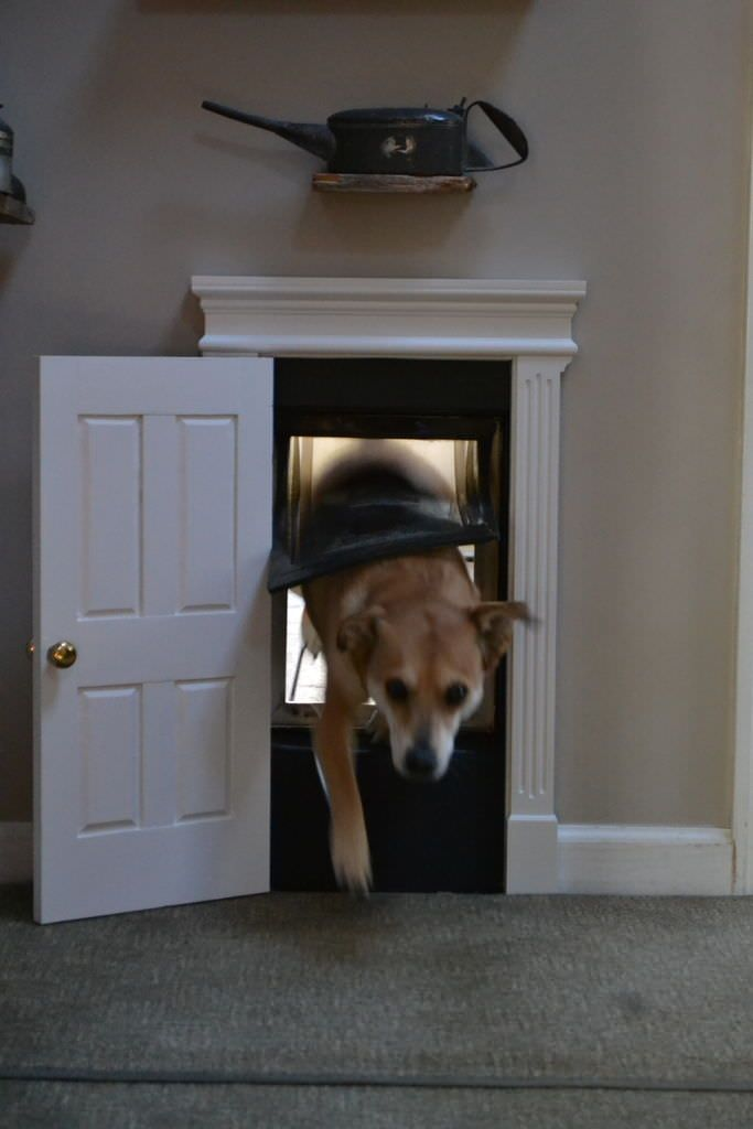We have two great dogs that use a standard dog door. It is incredibly convenient, but I never liked the look of the door. I decided to upscale it with a custom-made door frame and a raised panel door. Everything was built out of pine. I bought stock molding for the header and routed the fluted columns and plinth blocks. The door was made with a 3-piece raised panel, rail, and stile bit set on my router table. The knob is a pair of brass kitchen cabinet knobs, and the hinges are just some…