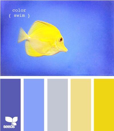 color swim design seeds hues tones shades color palette, color inspiration cards #hues #tones #shades #colorpalette #colorinspiration #designseeds