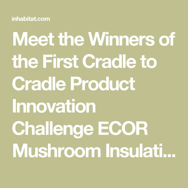 Meet the Winners of the First Cradle to Cradle Product Innovation Challenge ECOR Mushroom Insulation Cradle to Cradle Competition – Inhabitat - Green Design, Innovation, Architecture, Green Building