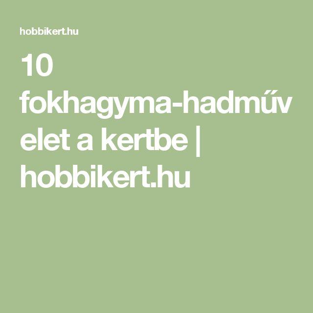 10 fokhagyma-hadművelet a kertbe   hobbikert.hu