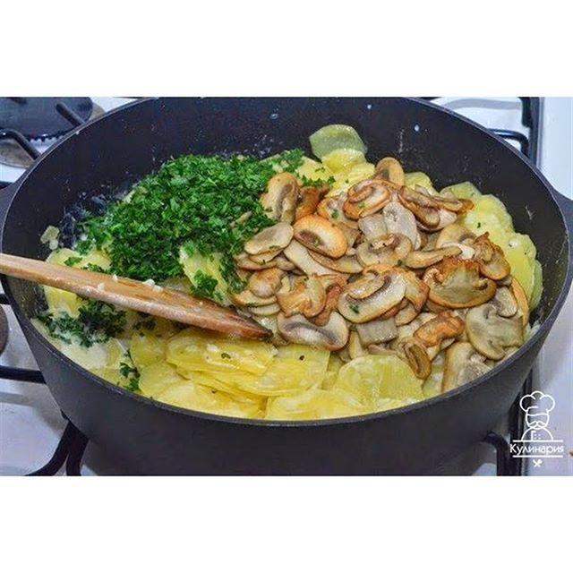 Картошка с грибами в сметане  Безумно вкусно!!!🍄 Ингредиенты: ●700 г картофеля ●400 г свежих шампиньонов ●300 мл жирной сметаны (25-30%) ●3-4 дольки чеснока ●петрушка свежая ●80 мл подсолнечного масла ●соль и перец по вкусу.  Приготовление:  Процесс приготовления картошки с грибами в сметане. Картофель очистите, обмойте, нарежьте тонкими пластинками. Еще раз хорошо промойте, дайте стечь воде. Разогрейте сковородку с маслом. Выложите картофель, жарьте на огне чуть больше среднего. Посолите…
